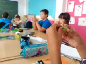 saboreo uva (2)