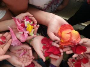 petalos Arancha Revuelta
